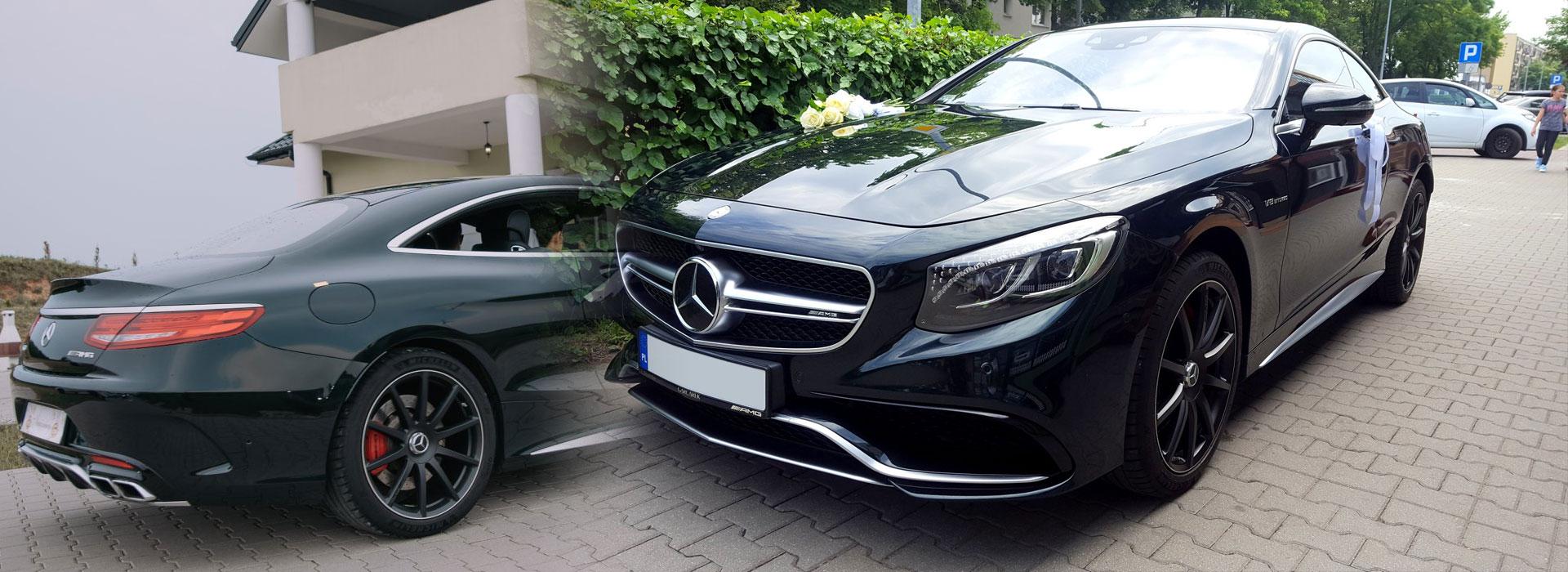 Turek - luksusowe